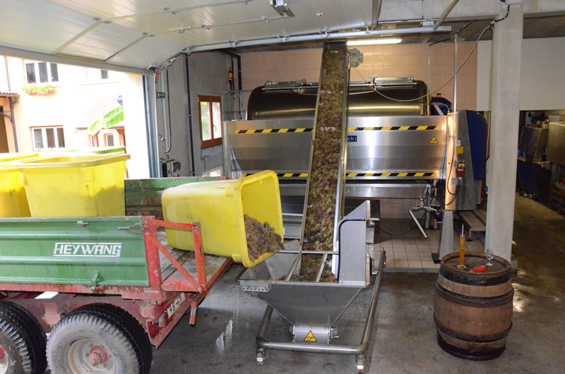 Vigneron Vin d'Alsace BIO